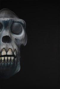 zvireci lebka gorily na cernem pozadi obraz jako investice umění