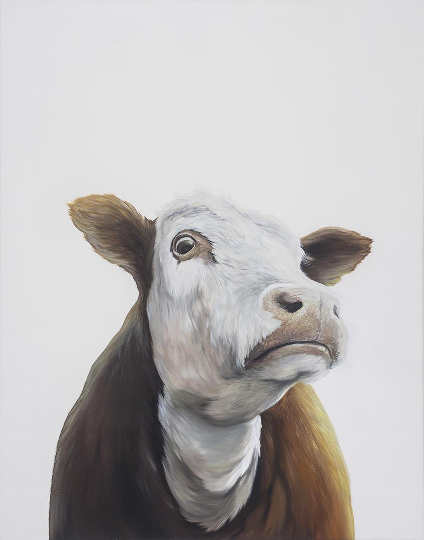 Kráva Adam Jilek olej na platne obraz realismus realisticka malba realistic painting hypperrealismus zdenek beran absolvent avu